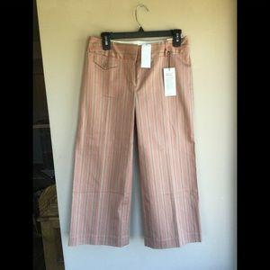 Express Correspondent Crop Pants